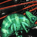 Tričko s vreckom krátky rukáv grafický dizajn Chameleon